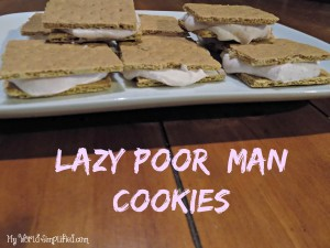 Lazy Poor Man Cookies